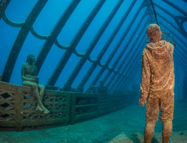 MOUA-Coral-Greenhouse-Australia