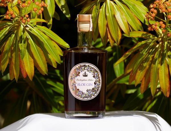 royal-collection-sloe-gin